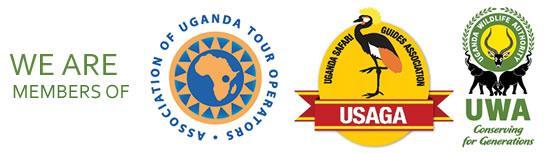 We are Members of AUTO, UWA & USAGA